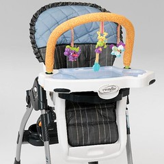 Recalled highchair