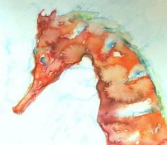 SEAHORSE-(detail) (fishpainter/senol) Tags: orange fish water seahorse seadragon portre balık denizatı top20fish fishpainter waterclorfisher fishpainterx