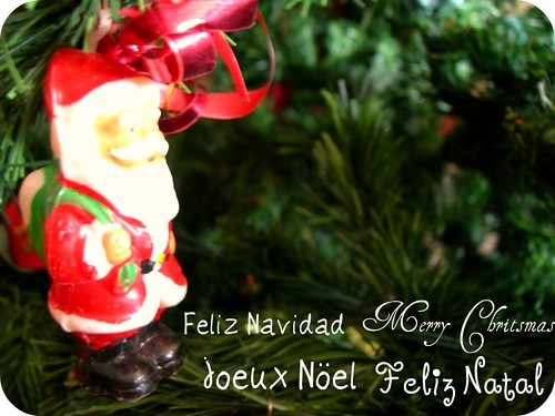 365/ Day 91: ¡Felices Fiestas!