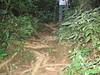 IMG_0231 (Muralidhar Kini) Tags: madikeri tadiandamol