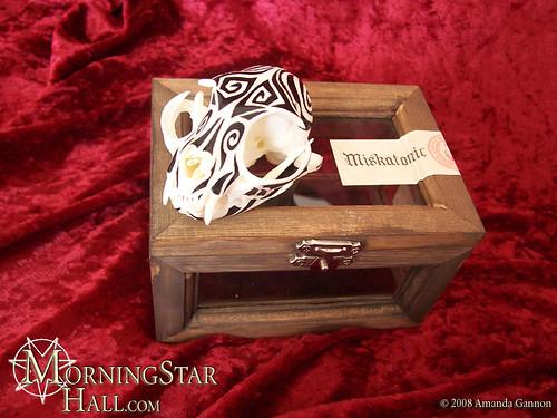 Cat Skull Box 01