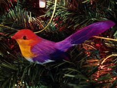 birrrrrd (txomin98) Tags: bird arbol navidad colores pajarito