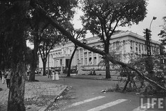 11-1963 Presidential Palace gutted & ransacked after military coup that overthrew Diem government. 2 par VIETNAM History in Pictures (1962-1963)