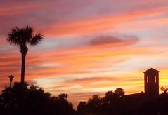 Beautiful Close (fyrgyrl1998) Tags: sunset tree church geotagged steeple fl palatka otw addictedtoflickr abigfave mycameraneverlies theunforgettablepictures samsungs630 dragonflyaward