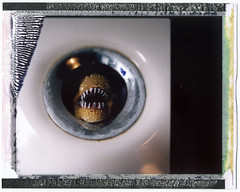 How a Bathtube can be? (Giorgio Verdiani) Tags: mamiya film home polaroid casa bath fuji sink silk bagno trex 100asa bathtube rb67 pellicola lavandino instantfilm polaroidback mamiyasekor scarico fp100c autaut tirranosauro panpola silkfilm