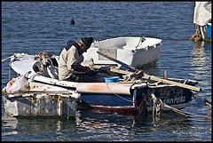 Giampiero (IL_Razza) Tags: sea 20d canon lunch boat reflex fisherman barca mare fisher riflessi livorno pescatore pranzo leghorn livornesi