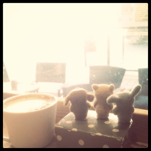 latte and bobbaloos