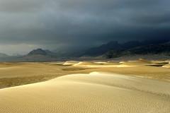 TAYEM131 (www.adamsonvisuals.com) Tags: travel toby tourism landscape sand desert dune east yemen middle adamson