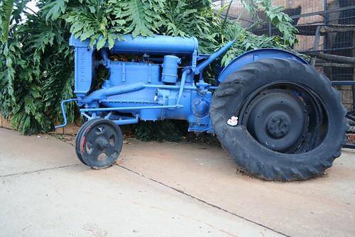 http://farm4.static.flickr.com/3129/2500129308_ebf29da631.jpg?v=0