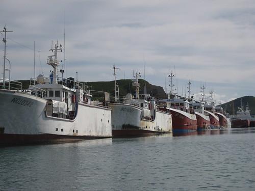 Noumea fishing fleet
