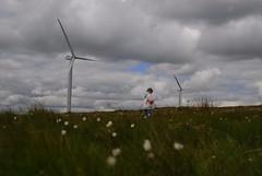 Scout Moor Windfarm