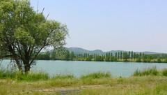 laghetti di Plessiva a (AnnAbulf) Tags: lago see teich fvg babel laghetto weiher friuliveneziagiulia cormons plessiva friauljulischvenetien