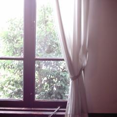 【写真】ミニデジで撮影した小出邸の窓