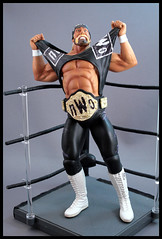 Hulk Hogan nWo (The_Guide) Tags: black toy actionfigure wrestling nwo champion hollywood hulkhogan wwe wwf wcw customhulkhoganfigure unmatchedfury