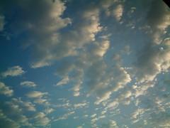 【写真】VQ3007で撮影した朝の風景(朝焼けの空と雲)