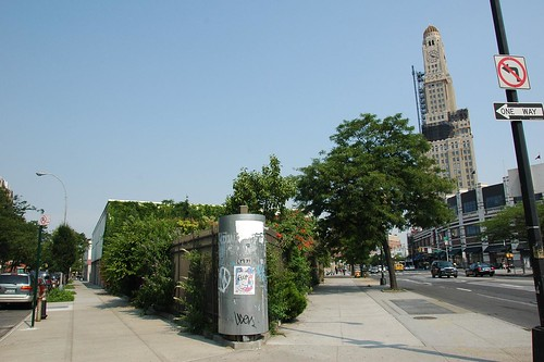 Brooklyn Bear's Garden, Pacific Street and Flatbush Avenue