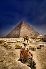 Ancient Trip (Khaled A.K) Tags: sky clouds sand bravo pyramid egypt cairo camel pyramids khaled giza hdr 3xp