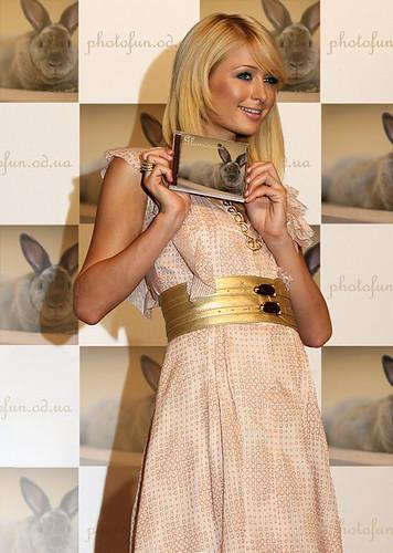 Paris Hilton - Fame