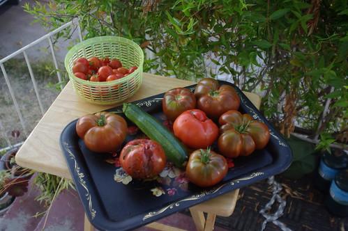 Garden Harvest, 8/29/08
