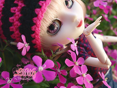 Lilith_Sesion01_01 (Sheryl Designs) Tags: alte lilith color white pink black japan 16 doll dolls groove junplanning pullip pullips sheryl designs design sheryldesigns new custom face hair wig eye eyes chip chips acrylic eyemech mechanism carved lips eyebrows eyelashes modified sculpt body bodies obisu outfit forum foro forodepullips pullipes