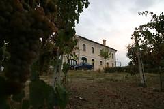 Italien 2008 (T. Wurm) Tags: italien vacation italy holiday del canon eos europa europe italia urlaub tuscany ita gps sole marche marken umbria lazio toskana 30d umbrien piagge montecarotto