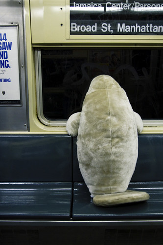 Manatee wants out