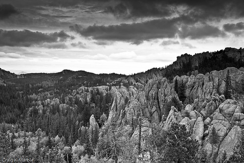 Black Hills Black and White