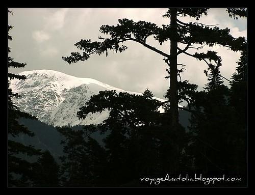 Mount Ilgaz