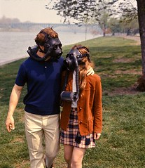 couple gas masks (hastingsgraham) Tags: walking couple 1970s blueshirt gasmasks orangejacket