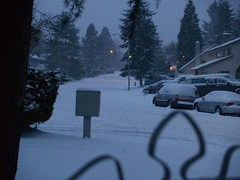 SNOW 12-21-08