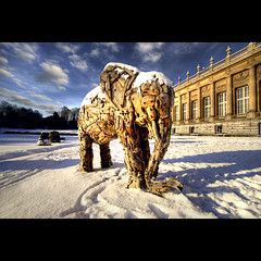 A Snowy Day Outside The Museum (Dimitri Depaepe) Tags: wood winter snow elephant art museum clouds belgium belgie tervuren bec hdr brrrrrrrrrrr infinestyle