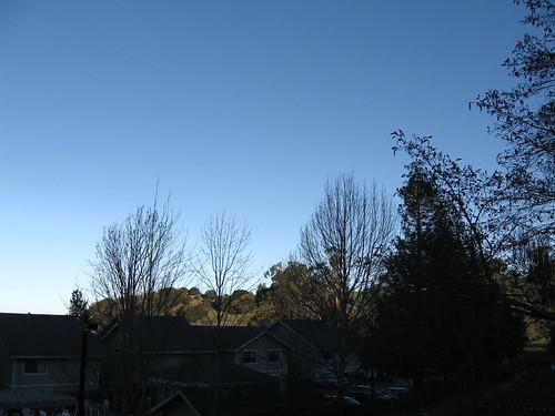 McInnis Park in January