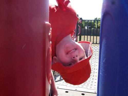 upside down willem