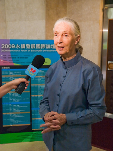 Dr. Jane Goodall Interviewed 珍古德博士受訪