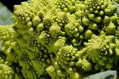 Roman Cauliflower 11 (Chris Waring) Tags: macro nature nikon broccoli vegetable wierd cauliflower fractal cls romanescocauliflower romanescobroccoli romancauliflower d700