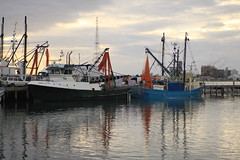 Home Safe (Plymography Down Under!) Tags: road water port river boats island fishing dock south side australia adelaide catch inlet reach mast nets torrens vessels jasonnolan dockside moorhouse unloading barkers lipson plymography wwwplymographycom jastralia plymographycom