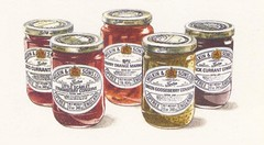 "Illustration for Wilkin & Sons Press Advert • <a style=""font-size:0.8em;"" href=""http://www.flickr.com/photos/64357681@N04/5866284602/"" target=""_blank"">View on Flickr</a>"