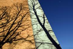 03/15 (Arlo Bates) Tags: shadow sky brown moon building lines wall grey march warm winnipeg shadows angle bricks sunny bluesky walkabout lowkey osbornevillage nikond200 tamron1750 365photoproject epiceditsweblogphotoshopcsactionspack