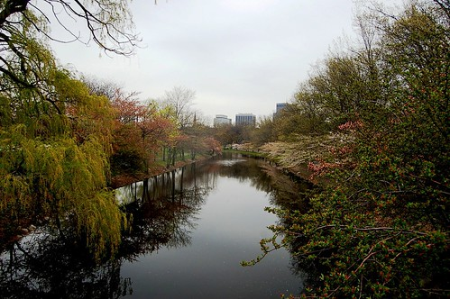 Charles River-Boston