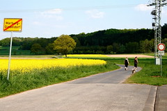 summer was here (pipitdapo) Tags: dog yellow landscape spring walk country may 2008 rapsfeld canolafield marburgginseldorf