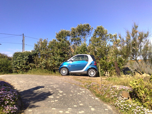 good morning tiny car