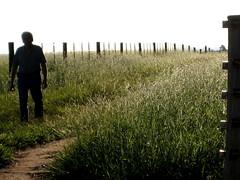 o corredor (parttimefarm) Tags: grass brasil farm dirtroad pai corredor echapora fazenda