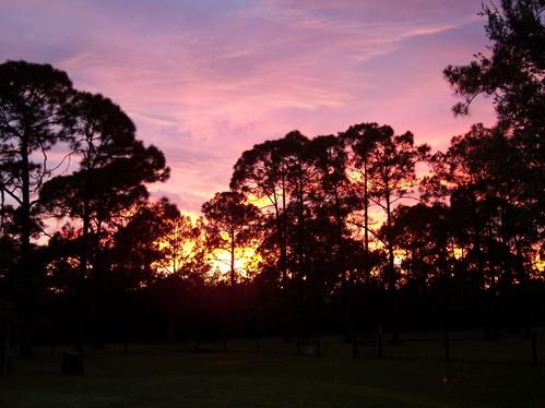 A PollywogCreek Sunset