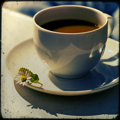 Daisy & Coffee (Fake TTV) (*sputnik) Tags: flower texture coffee photoshop vintage crossprocessed grunge kaffee daisy sputnik blume 2008 gnseblmchen ttv fakettv artlibre supereco overtheexcellence