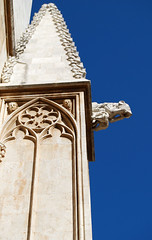 (Toms Badia) Tags: church cathedral gothic catedral iglesia catalonia gargoyle chiesa catalunya grgola glise catalua tarragona grgola catalogne gtic gtico esglsia bicri510000086