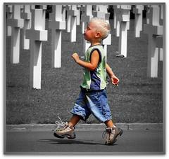 Marching along (patries71) Tags: friedhof cemetery cementerio ww2 picnik begraafplaats cimetière kerkhof americancemetery margraten cimiteri blackribbonicon oorlogsbegraafplaats patries71
