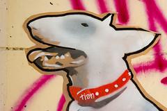 tian en opration  Paris ! (un oeil qui trane) Tags: street urban streetart paris france pastedpaper art collage print poster stencil paint tian peinture affichage 75 affiche graffitis pochoir affiches 04