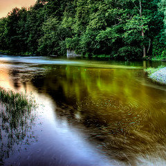 swirl ([Adam Baker]) Tags: trees summer newyork nature water creek canon stream cornell swirl hdr cornellplantations photomatix 24105l adambaker 40d platinumphoto
