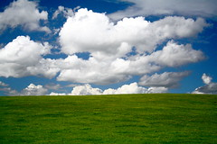 Windows XP (geeo123) Tags: blue windows white macro green grass clouds computer flickr xp manual hay soe stacks supershot absolutelystunningscapes geeo123