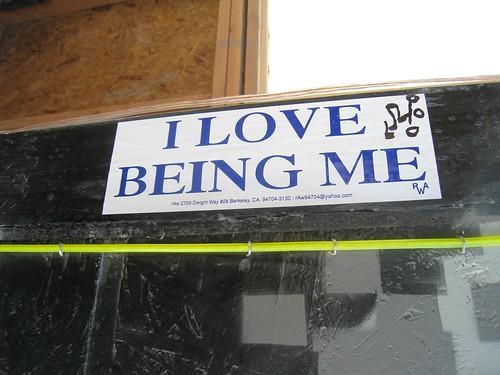 Seen at Burning Man 2008